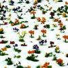 Flores en la helada