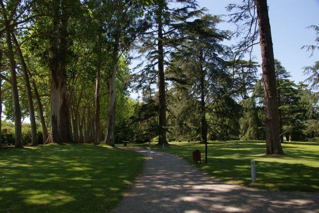 Jard n botanico de gij n fotos de para so natural for Jardin urbano gijon