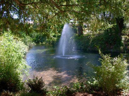 Fotos jard n bot nico de druida objetivo asturias - Salon de jardin botanic ...