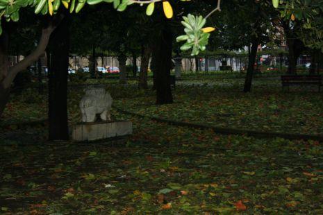 parque del muelle ( 04-10-2010 )