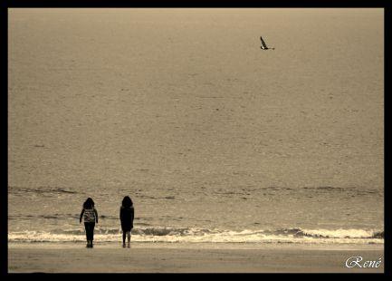 Ellas y el mar