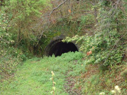Túnel de Tarna en la vía inacabada de Lieres
