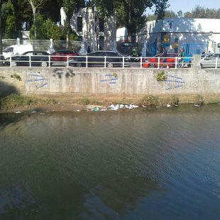 Bolsas de plástico en el río Piles
